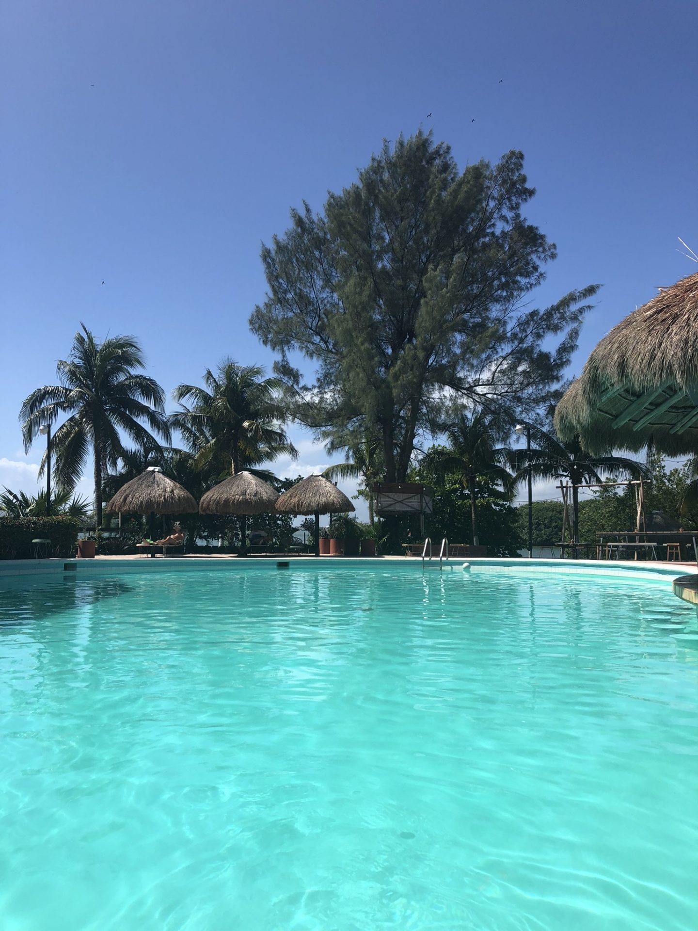 Sunbathing by the pool at Selina, Cancun in Mexico