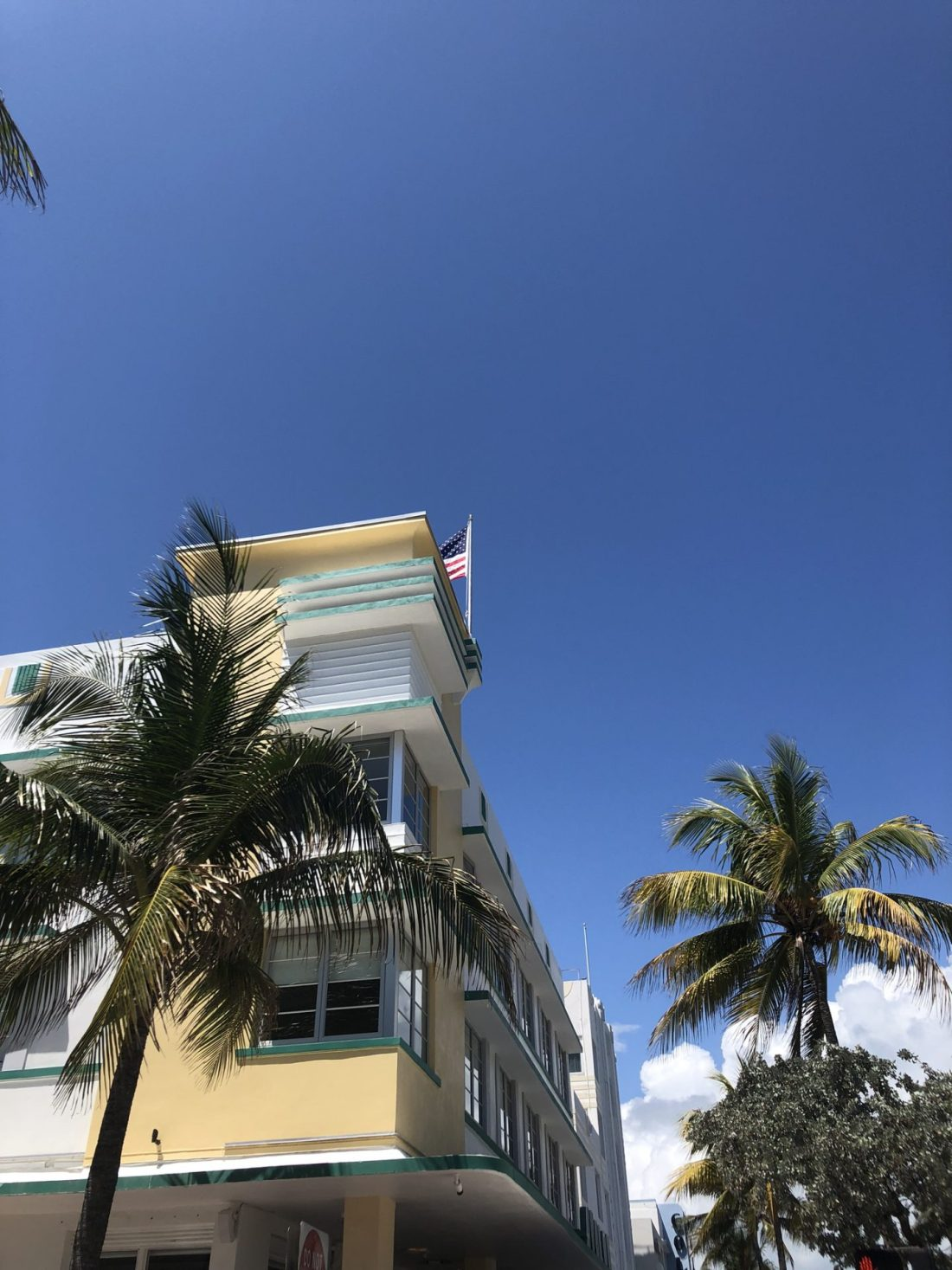 Palm trees and art deco, Ocean Drive