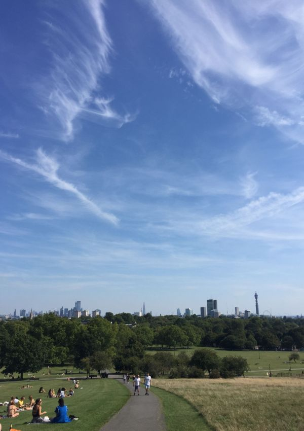 Primrose Hill views