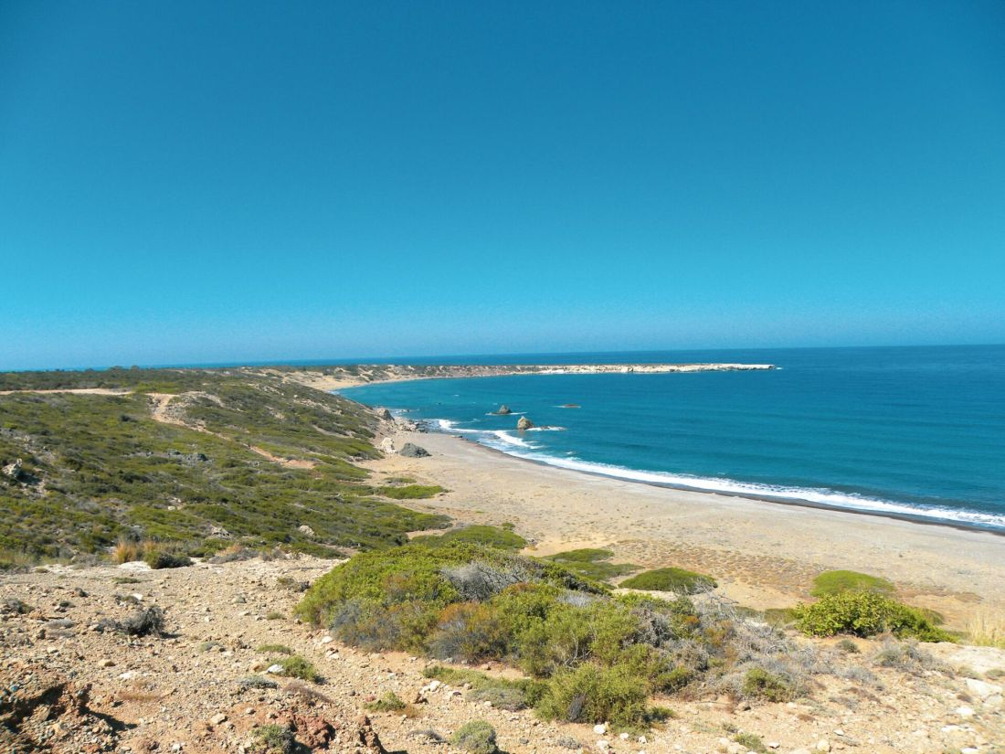 Best beaches in Cyprus: Lara Beach, Cyprus