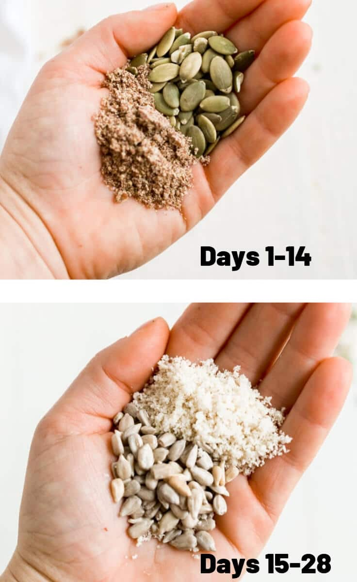 hand holding pumpkin seeds and flax seeds and another hand holding sunflower seeds and sesame seeds with which days to use for seed cycling