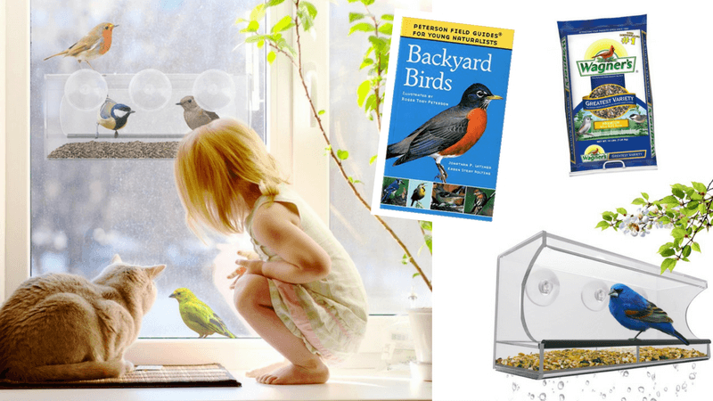 Best Non-Toy Gift Guide for Kids - bird feeder