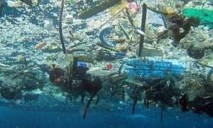 Jak bardzo oceany są zaśmiecone plastikiem?