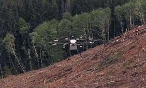 Drony będą używane do ratowania lasów