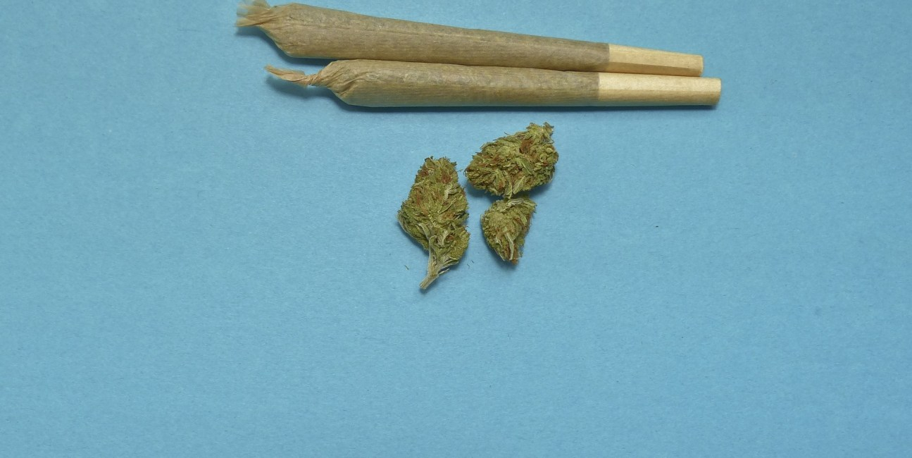 marihuana, śmieciowe jedzenie, gastrofaza, gastrofaza marihuana, jedzenie marihuana