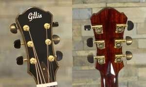 Gitara z możliwością nałożenia na strunę jednego kapodastera wleciała na Kickstartera