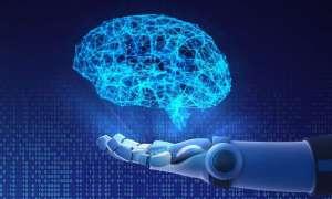 Zrozumienie mózgu zwierząt pomoże robotom w myciu naczyń
