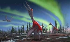 Ten gigantyczny pterozaur rządził kiedyś niebem