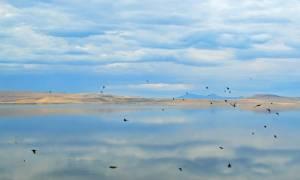 Co roku do Wielkich Jezior spływają miliony kilogramów tworzyw sztucznych