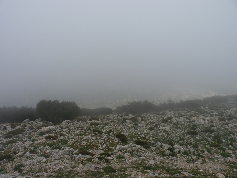 HEAD IN THE CLOUDS AT 1494 METRES ABOVE SEA LEVEL (3/6)