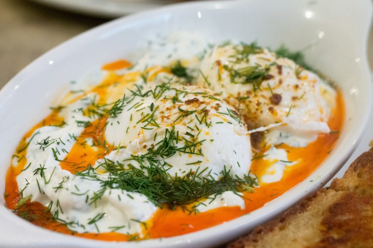 Eggbreak - Turkish eggs – poached eggs, dill yoghurt, 11 chilli and a cheese toastie