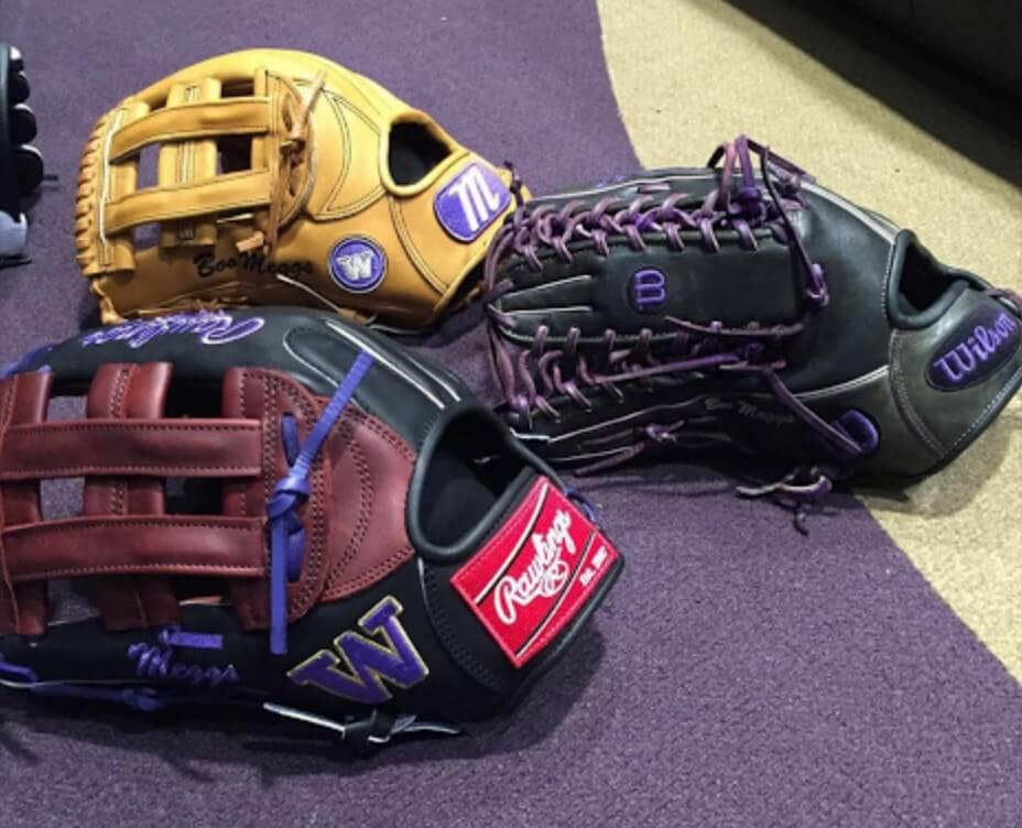 U Washington Gloves