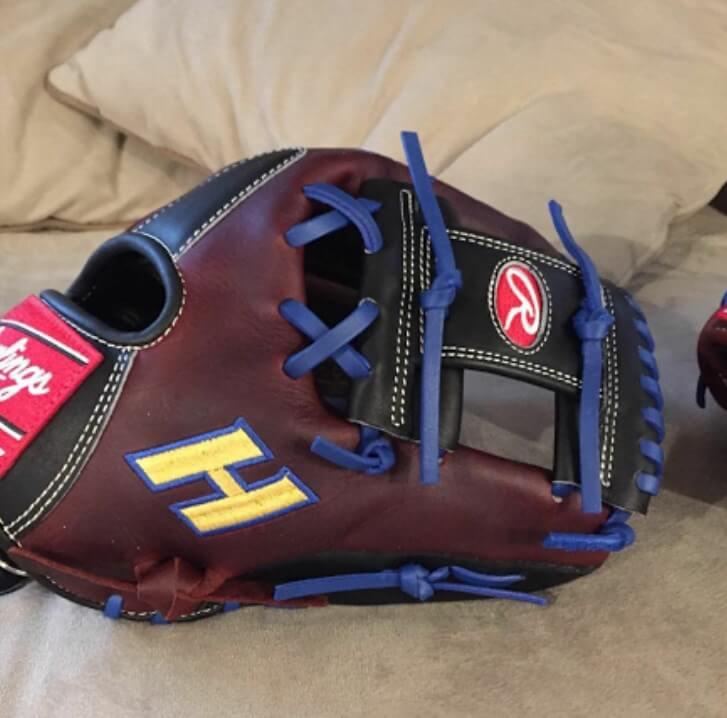 jonny_beisbol Hofstra Rawlings Glove