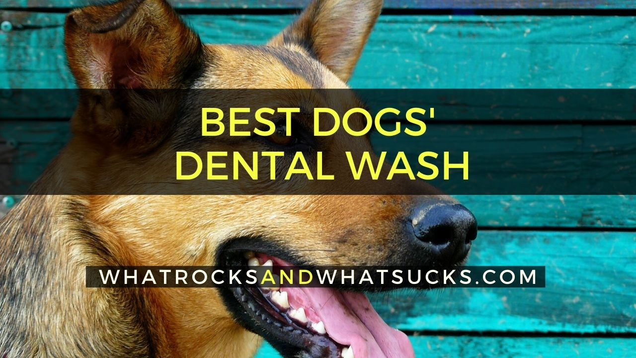 DOGS DENTAL WASH