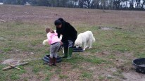 Feeding the guardian sheep dogs with Charissa.