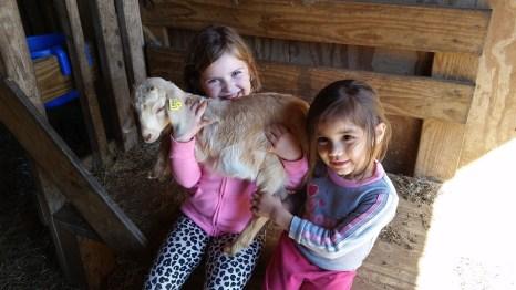 I've got a goat on me!