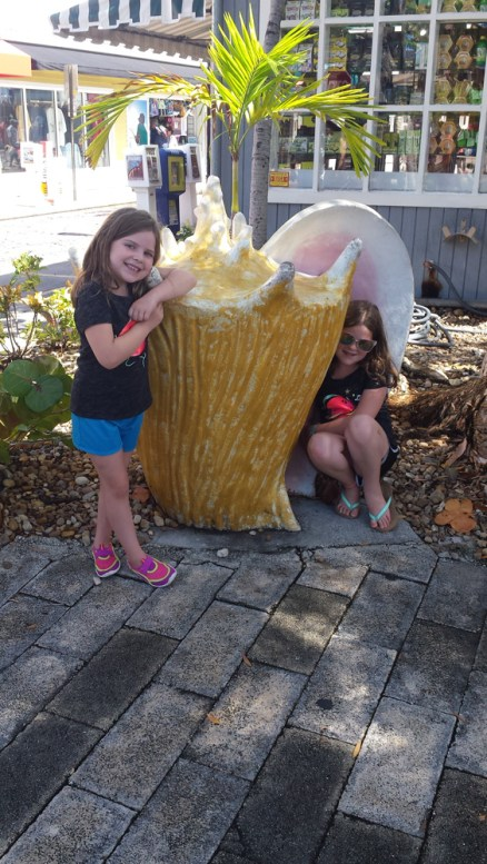 Biggest shell ever.