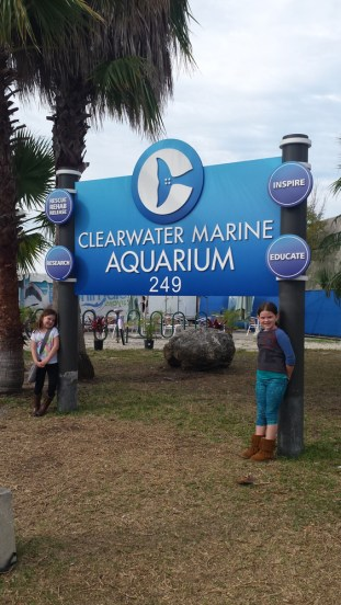 Home of Winter from Disney's Dolphin Tale