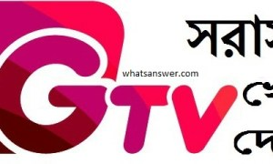 Gtv Live cricket | Gazi tv live cricket streaming | Gtv channel BD