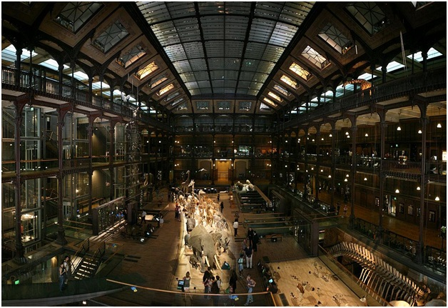 What is The National Museum of France?