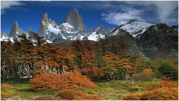 What is The National Parks of Argentina?