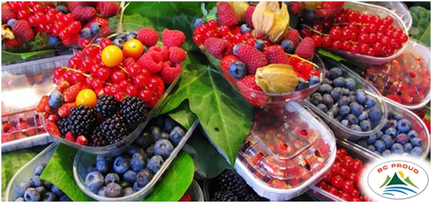 What is The National Fruit of Canada?