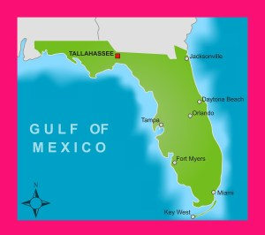 Florida City Map   Large Printable and Standard Map 4