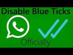 disable blue ticks