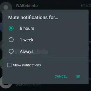 WhatsApp Group Mute