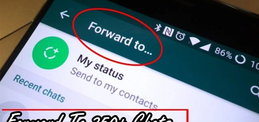 This How You Forward A Message In 250 Groups At Once Using FMWhatsApp