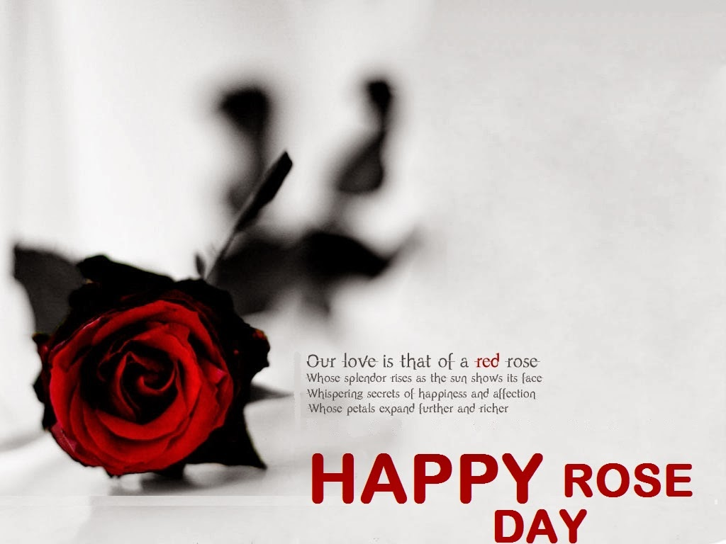 Fall In Love Again Wallpapers Rose Day Images For Whatsapp Dp Profile Wallpapers Free