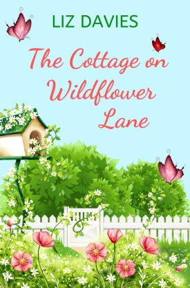 #BlogTour #BookReview The Cottage on Wildflower Lane by Liz Davies @lizdaviesauthor @rararesources