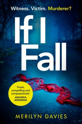 #BlogTour #BookReview If I Fall by Merilyn Davies @arrowpublishing #IfIFall #MerilynDavies