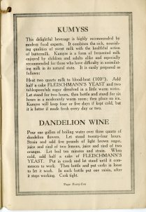 recipes for kumyss and dandelion wine