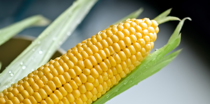 how to microwave corn on the cob what