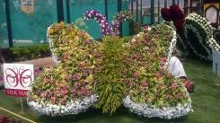 republic-day-flower-show-january-2017-at-glass-house-lalbagh-bengaluru-22