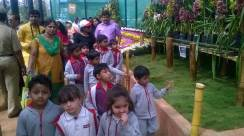 republic-day-flower-show-january-2017-at-glass-house-lalbagh-bengaluru-26