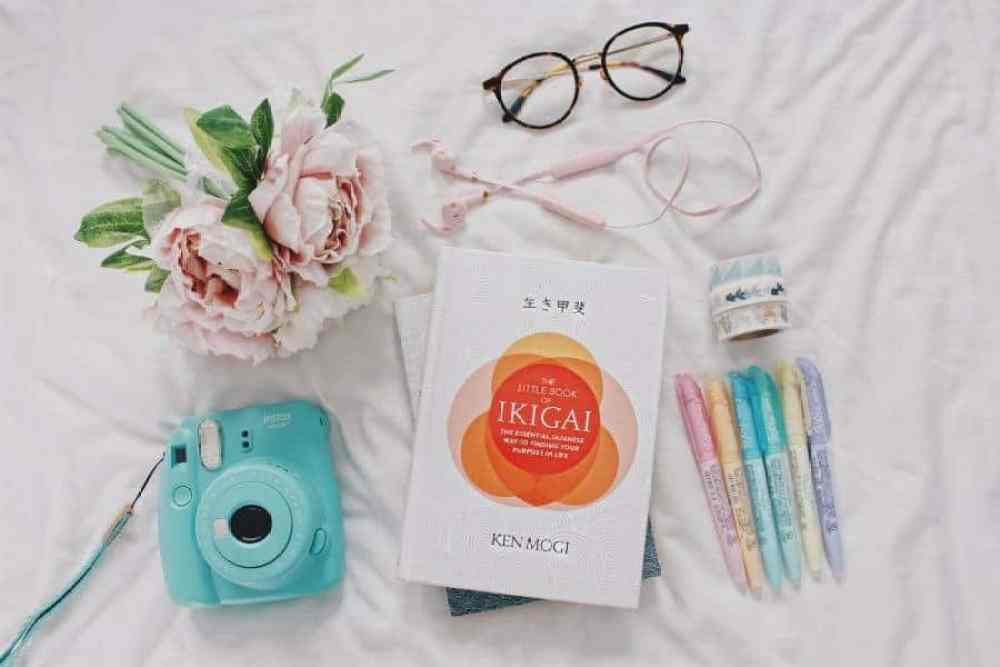 THE LITTLE BOOK OF IKIGAI: FINDING YOUR PURPOSE IN LIFE