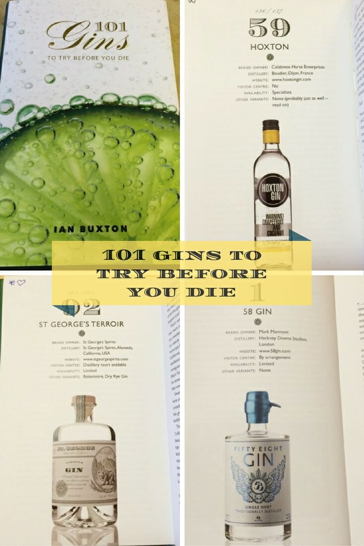 101-gins-to-try-before-you-die