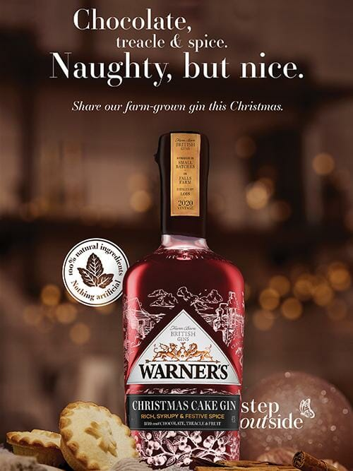 Warners Christmas cake gin
