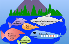 The Data Lake holds a lot of awkward fish
