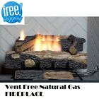 Natural Gas Fireplace Insert Vent Free Logs w Thermostat 24 inch Oakwood He