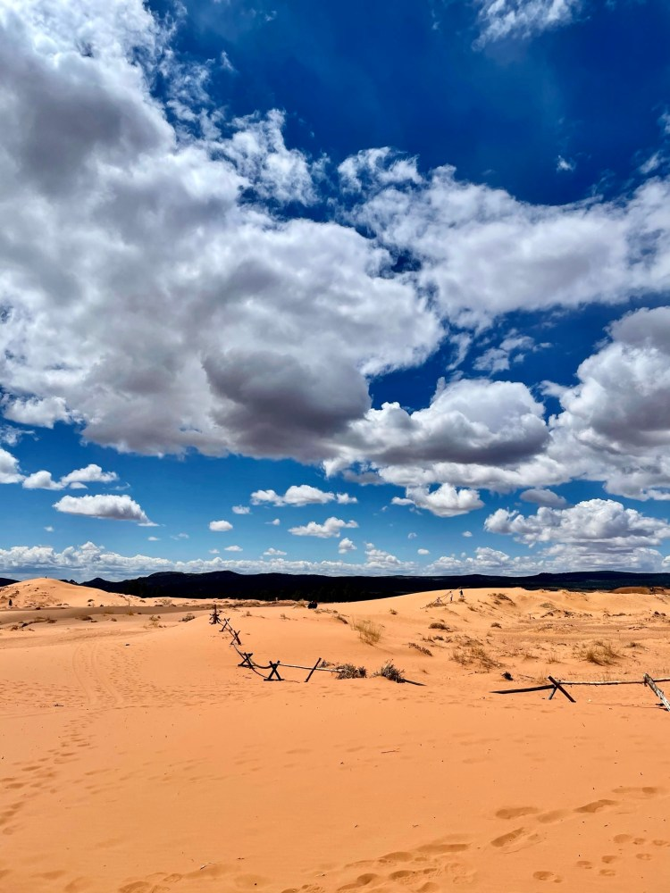 Coral Pink Sand Dunes Views
