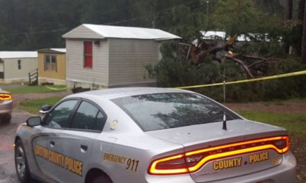 3-month-old killed after tree falls on mobile home in Gaston County, NC
