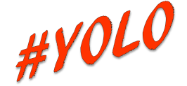 #yolo orange Icon