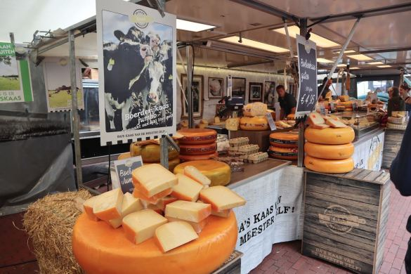 Gouda cheese from Holland