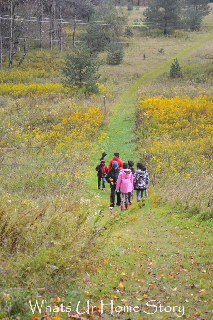 Wildflower trail in Canaan Valley Resort
