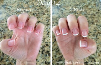 Regular vs Shellac- Day 14