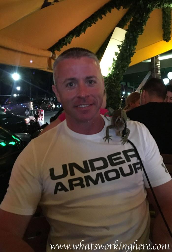 South Beach iguana
