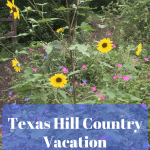 Texas Hill Country – San Antonio Vacation